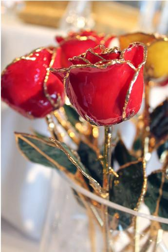 Forever Red Rose with 24k Gold trim